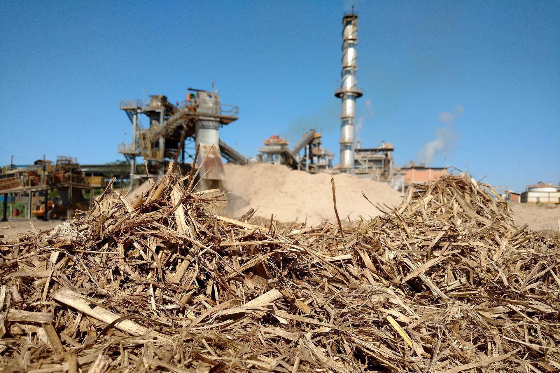 Energia da biomassa valoriza e já vale 49% mais - Energia que Fala ...