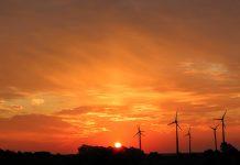 O papel da transição energética na retomada da economia