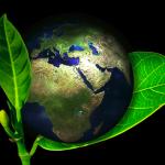 Corrida das empresas para reduzir impactos ambientais e ter fontes limpas está apenas no começo