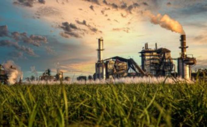 Etanol e cana-de-açúcar: mercado promissor na América Latina