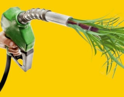 Etanol avança como 'arma' contra emissões de gases poluentes