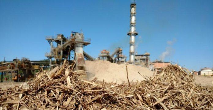 Governo autoriza compra extra de bioeletricidade até o fim de 2022