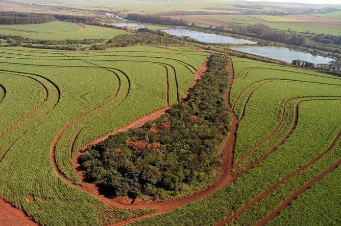 Vêm aí os fundos Fiagro, nova e robusta fonte de financiamentos para o agronegócio