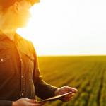 Como a TOTVS apoia o crescimento do agronegócio, o motor da economia brasileira
