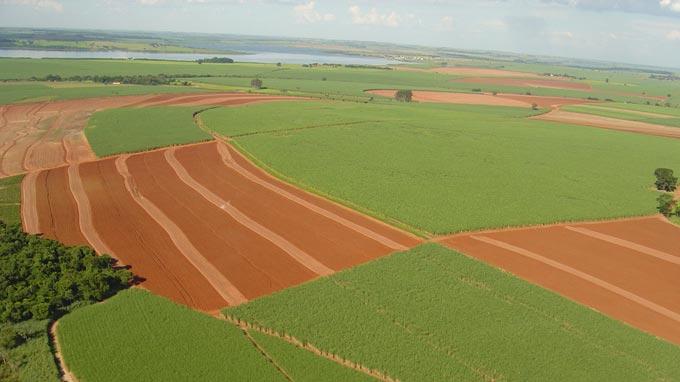 Como o agro faz o Brasil ser o principal candidato em atração de investimentos verdes do mundo